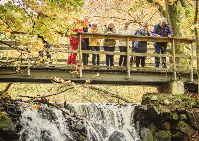 The waterfalls at Forsakar
